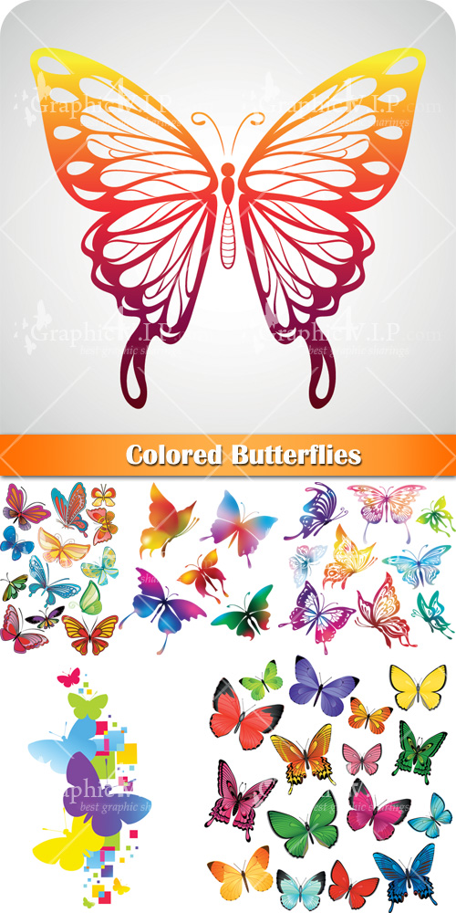 Colored Butterflies - Stock Vectors