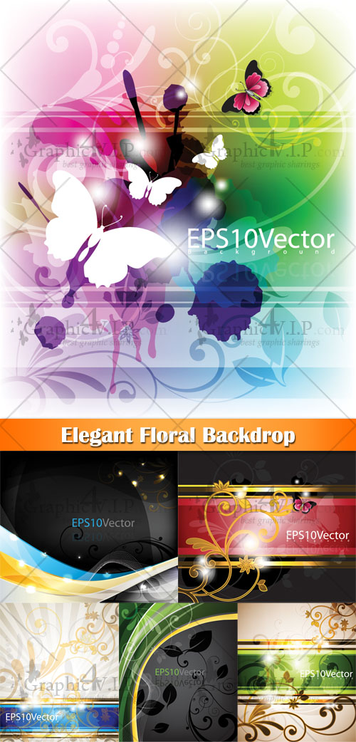 Elegant Floral Backdrop - Stock Vectors