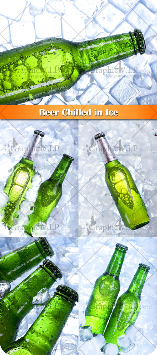 Beer Chilled in Ice - Stock Photos