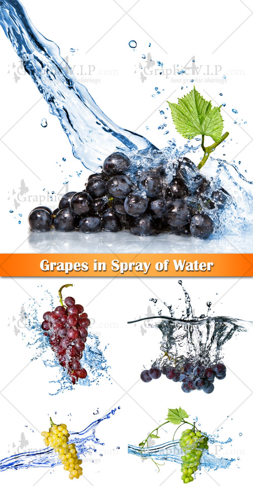 Grapes in Spray of Water - Stock Photos