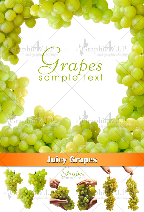 Juicy Grapes - Stock Photos