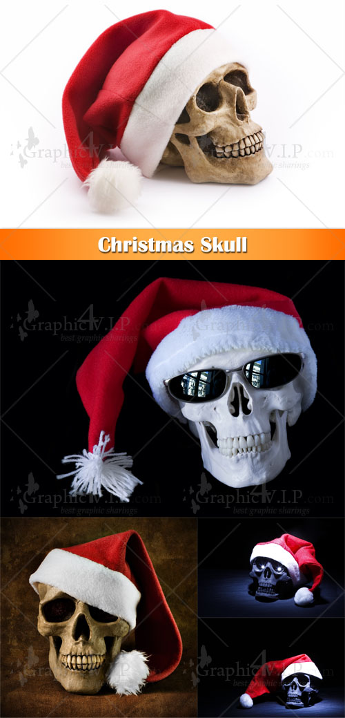 Christmas Skull - Stock Photos