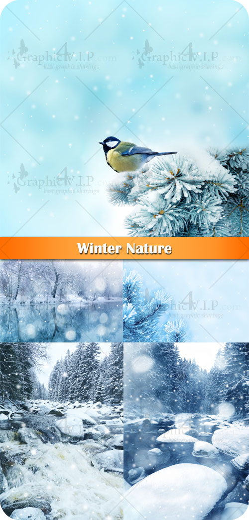Winter Nature - Stock Photos