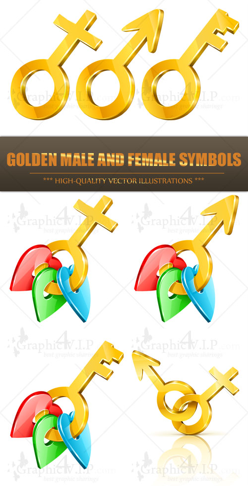Golden Male and Female Symbols - Stock Vectors