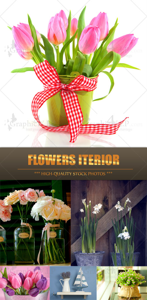 Flowers Iterior - Stock Photos