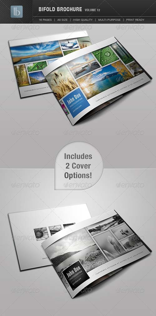 GraphicRiver Bifold Brochure | Volume 12