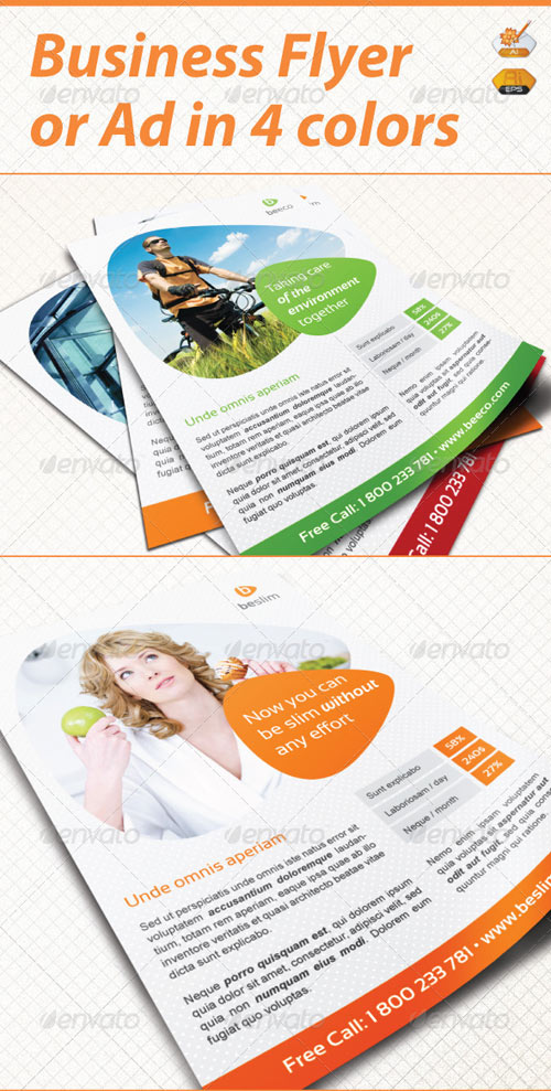 GraphicRiver Business Flyer / Ad