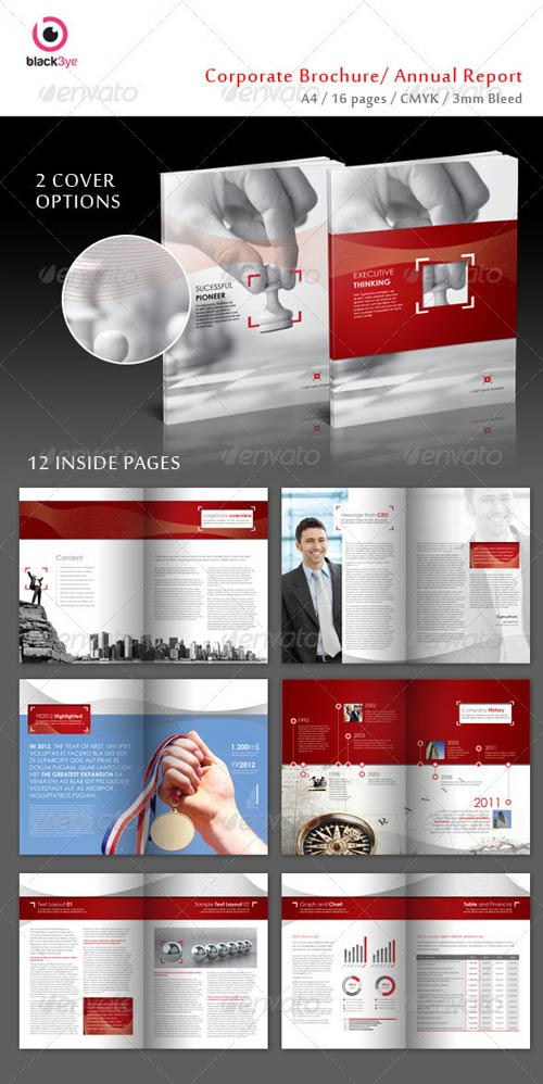 GraphicRiver Executive Corporate Brochure / Annual Report