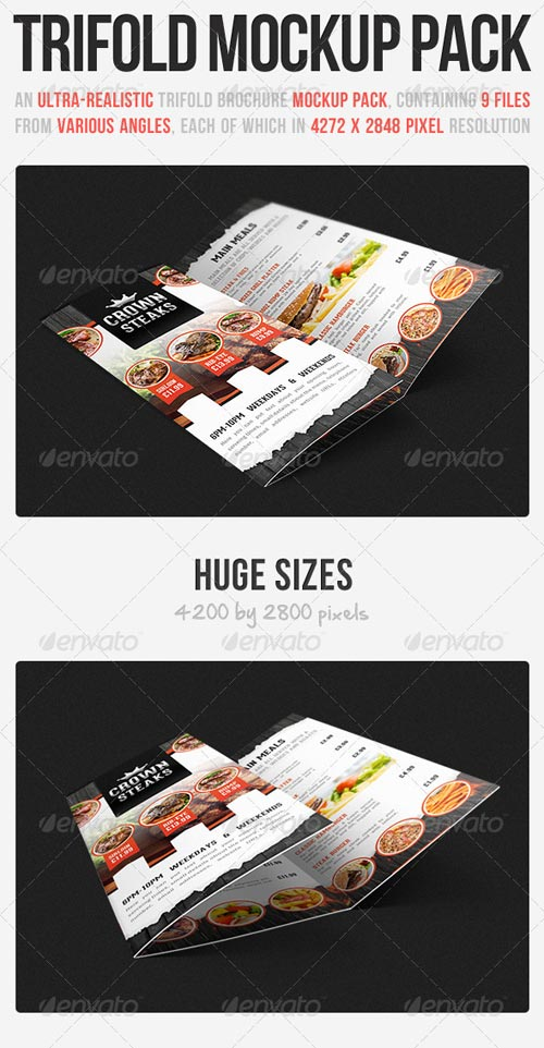GraphicRiver Trifold Brochure Mockup Pack