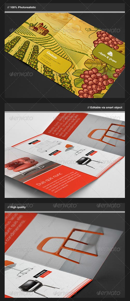 GraphicRiver Trifold Brochure Mock-Up
