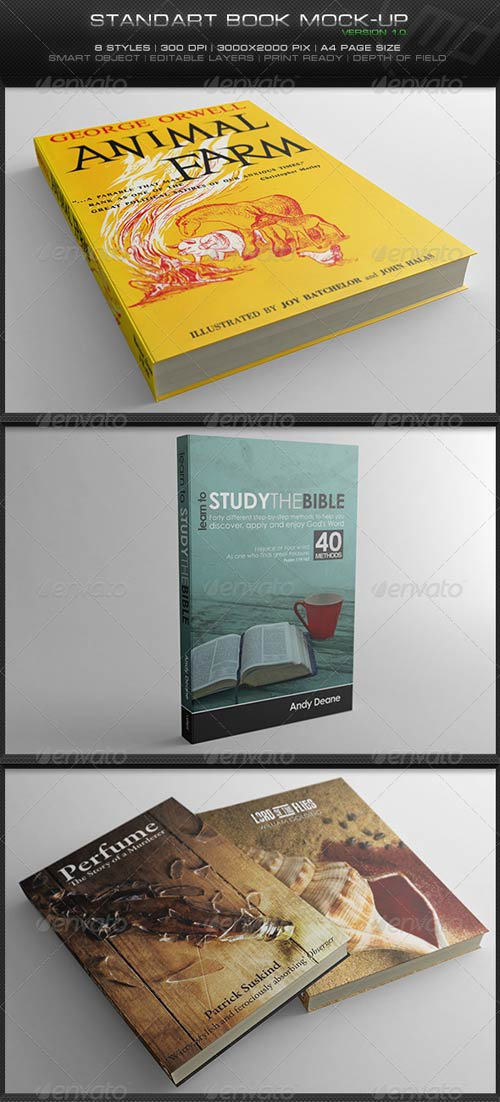 GraphicRiver Standart Book Mock-Up