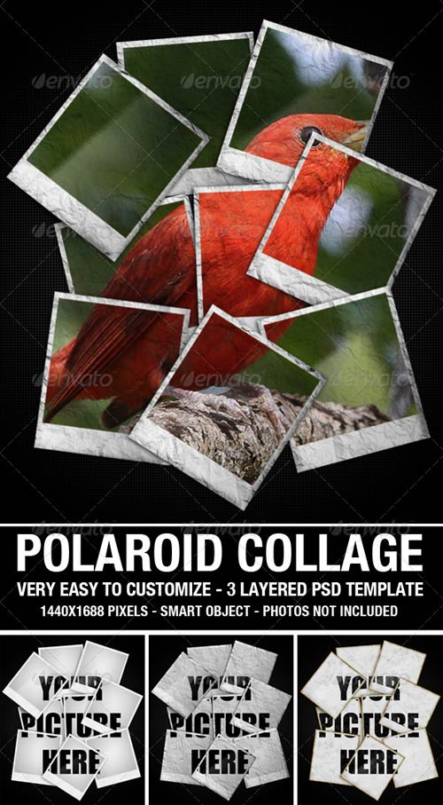 GraphicRiver Polaroid Collage Photo Template