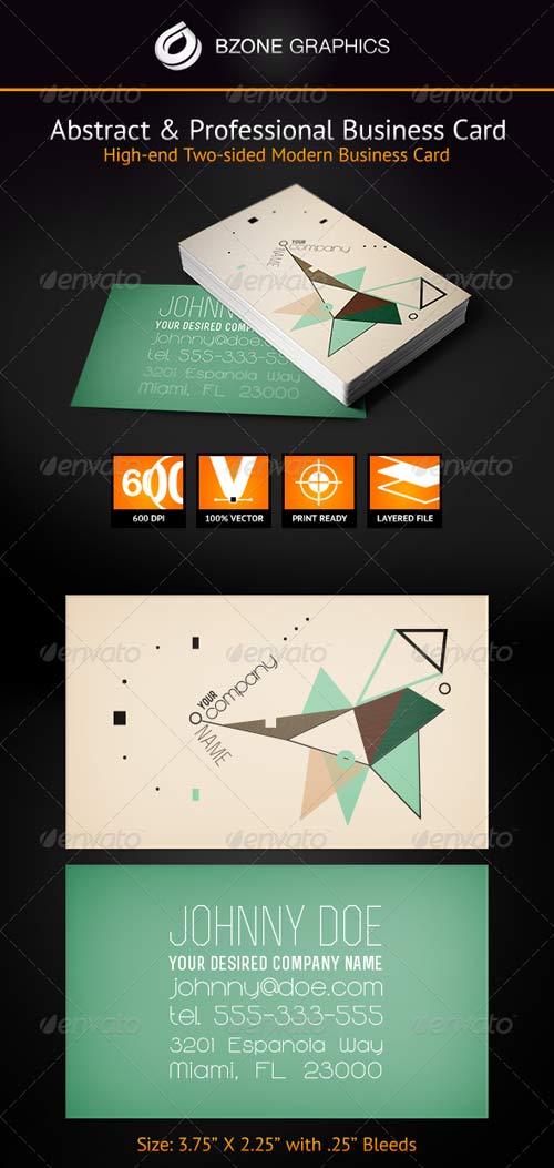 GraphicRiver Abstract & Professional Business Card