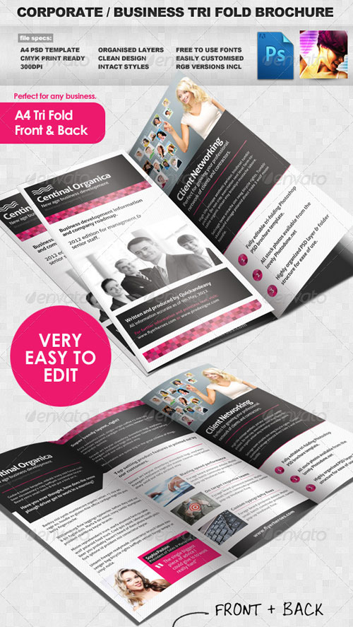 GraphicRiver Corporate / Business Tri Fold Brochure