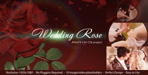 Wedding Rose - After Effects Project (Videohive)