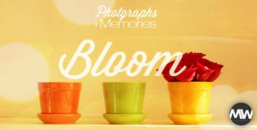 Photographs and Memories Bloom - After Effects Project (Videohive)