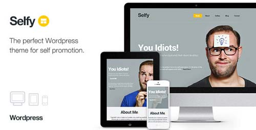 ThemeForest - Selfy - Responsive & Retina Ready WordPress Theme