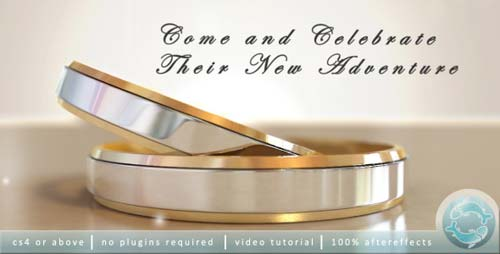Wedding Invitation 2533538 - After Effects Project (Videohive)