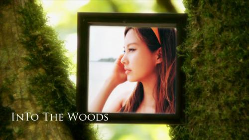 Into The Woods V1.0 - After Effects Project (Videohive)
