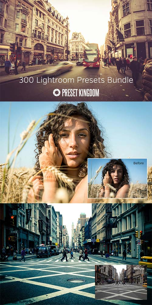CreativeMarket 300 Lightroom Presets Bundle