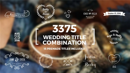 Elegant Wedding Title Combination Pack - After Effects Project (Videohive)