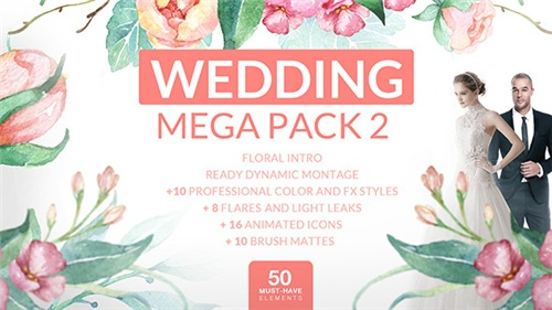 Wedding Mega Pack 2 - After Effects Project (Videohive)