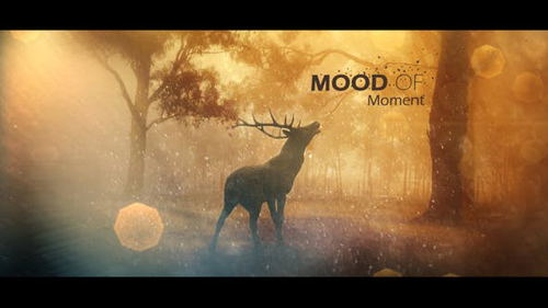 Mood Of Moments Parallax Opener - After Effects Project (Videohive)